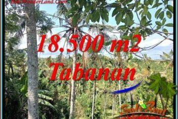 TANAH JUAL MURAH TABANAN 18,500 m2 VIEW LAUT DAN KEBUN