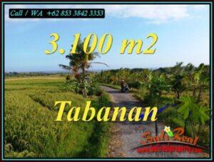 TANAH di TABANAN BALI DIJUAL MURAH Untuk INVESTASI TJTB496