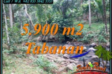 JUAL TANAH DI TABANAN 5,900 m2 VIEW SUNGAI