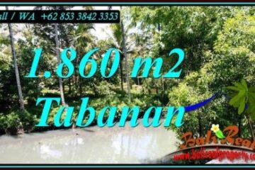 JUAL TANAH MURAH di TABANAN 18.6 Are di SELEMADEG