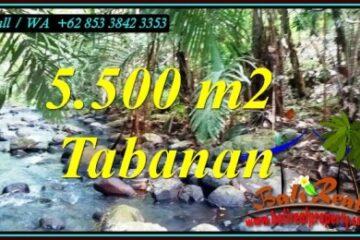 INVESTASI PROPERTI, TANAH MURAH DIJUAL di TABANAN BALI TJTB470