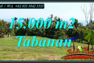 TANAH MURAH di TABANAN BALI DIJUAL 15,000 m2 SAWAH, GUNUNG DAN LAUT