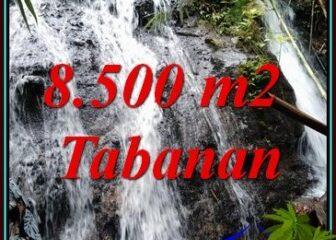 INVESTASI PROPERTY, TANAH di TABANAN BALI DIJUAL MURAH TJTB478