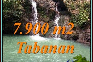 TANAH MURAH di TABANAN BALI DIJUAL 79 Are SUNGAI DAN AIR TERJUN