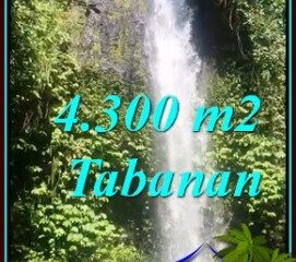 JUAL TANAH DI TABANAN BALI Untuk INVESTASI TJTB480