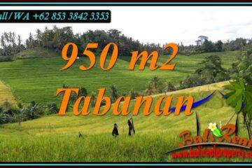 DIJUAL MURAH TANAH di TABANAN Untuk INVESTASI TJTB483